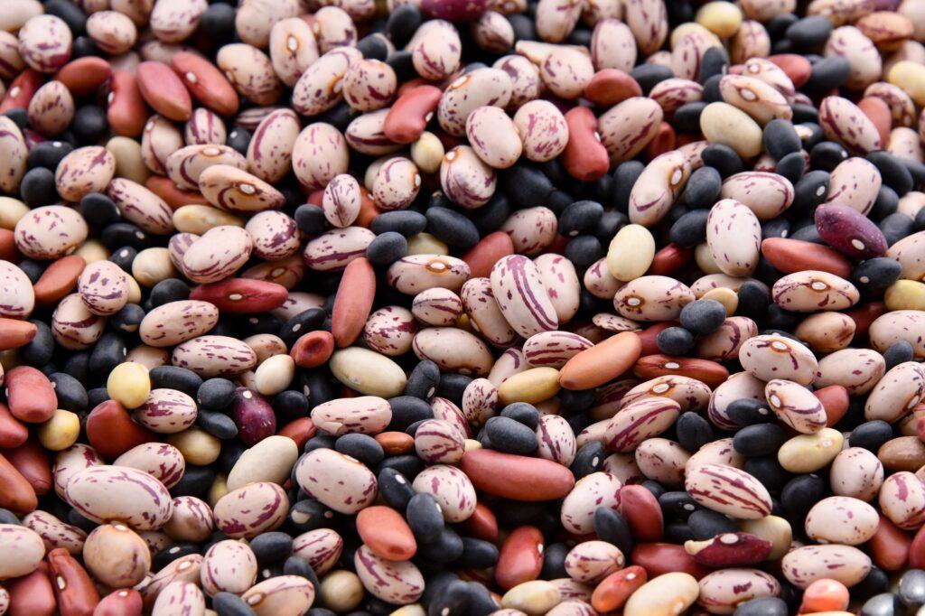 legumi dieta salutare benefici vivere più a lungo
